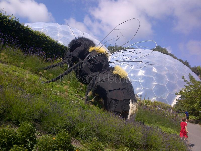 At the eden project stock images