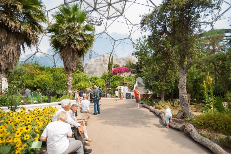 Eden Project-bezoekers binnen één van gaintkoepels stock afbeelding