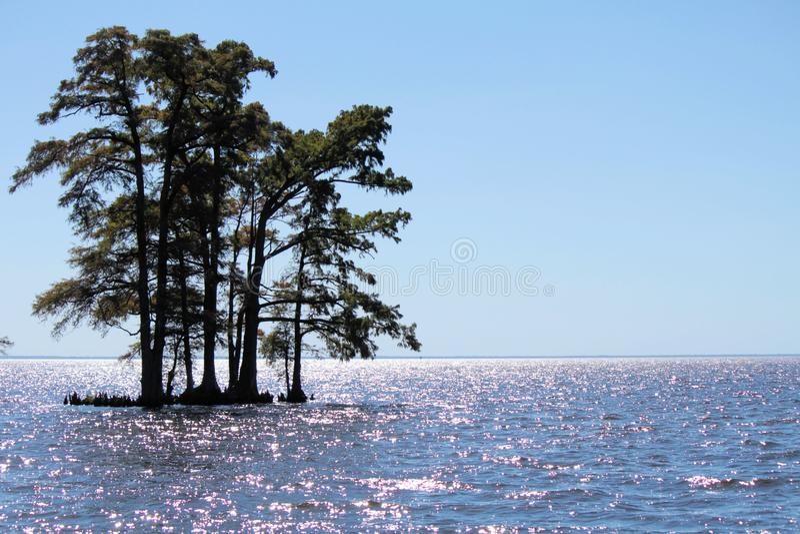 Download Edenton Bay stock image. Image of trees, serene, shimmering - 27328011