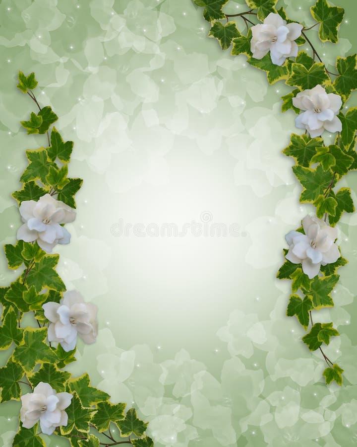 Edera floreale e Gardenias del bordo illustrazione vettoriale