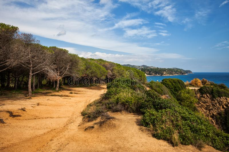Edge Of The Forest Path On Costa Brava stock photos