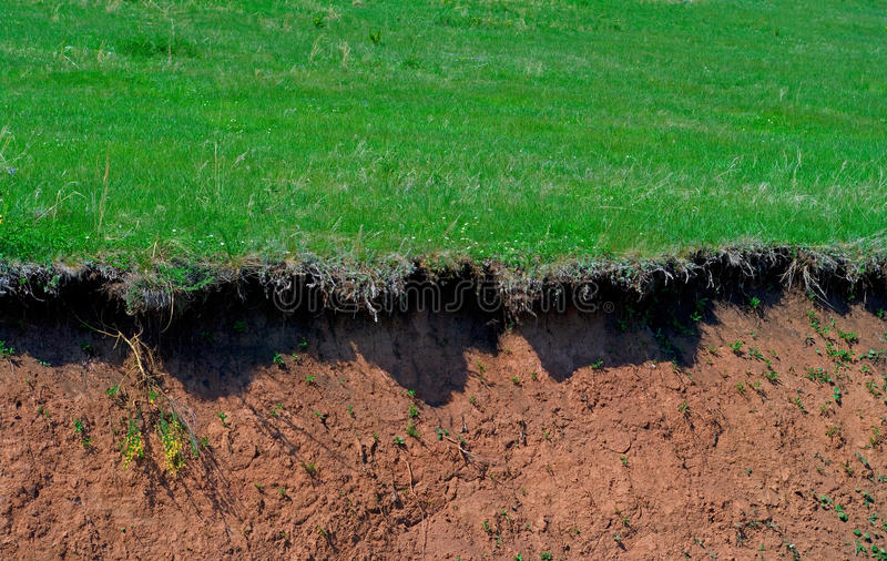 Download Edge of a ravine stock photo. Image of ravine, meadow - 9604386