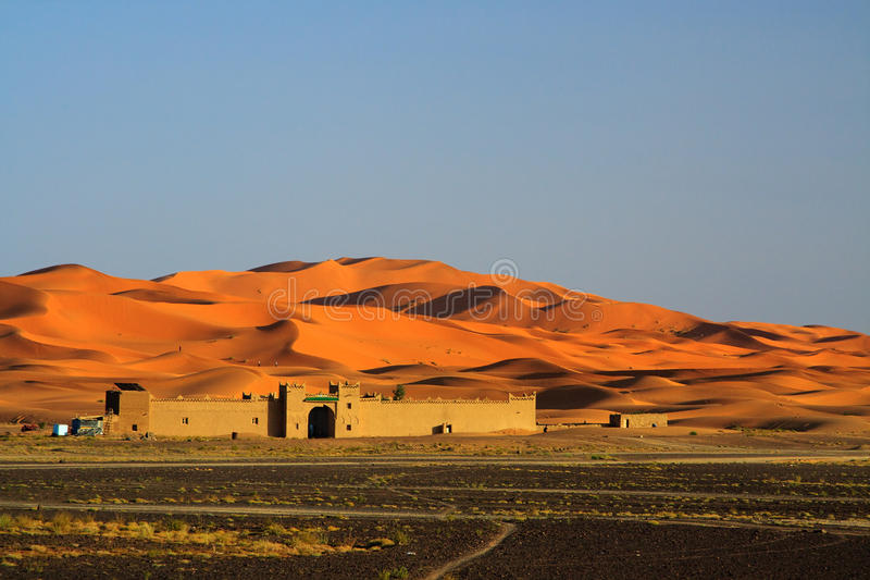 Edge of the Sahara Desert royalty free stock photography