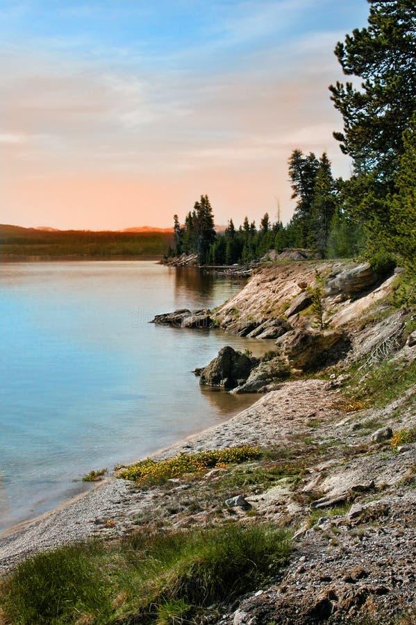 Edge of Yellowstone Lake. Dawn of yellowstone lake at Yellowstone National Park stock image