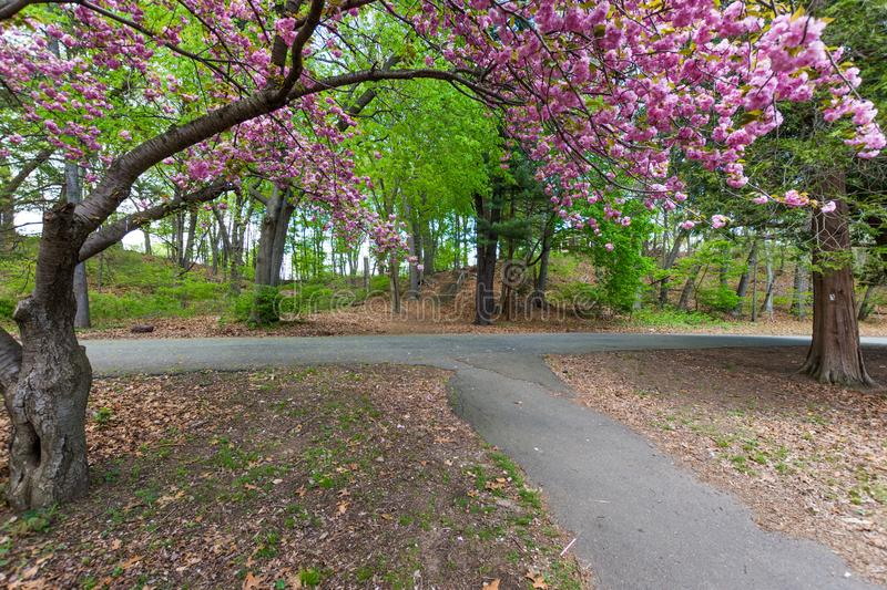 Edgewood State Park in New Haven Connecticut.  stock photo