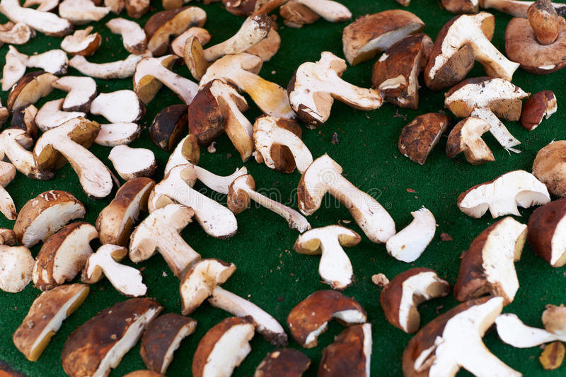 Download Edible boletus mushrooms stock image. Image of mushrooms - 38959033