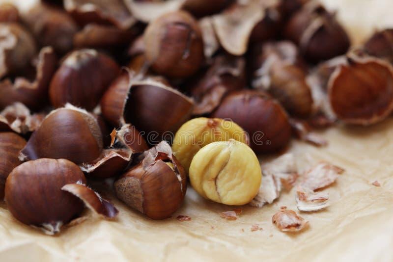 Edible chestnuts royalty free stock photos