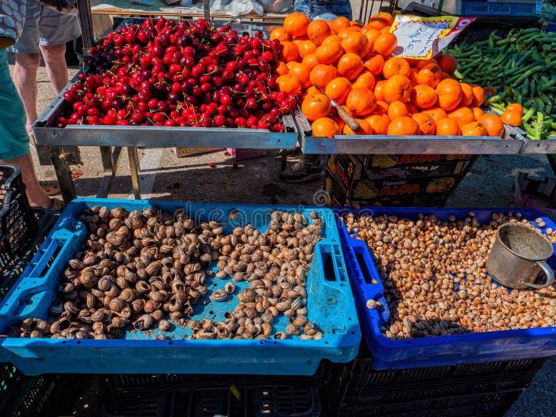 Edible snails and fruit, Estoi Gypsy Market, Algarve, Portugal. royalty free stock photography