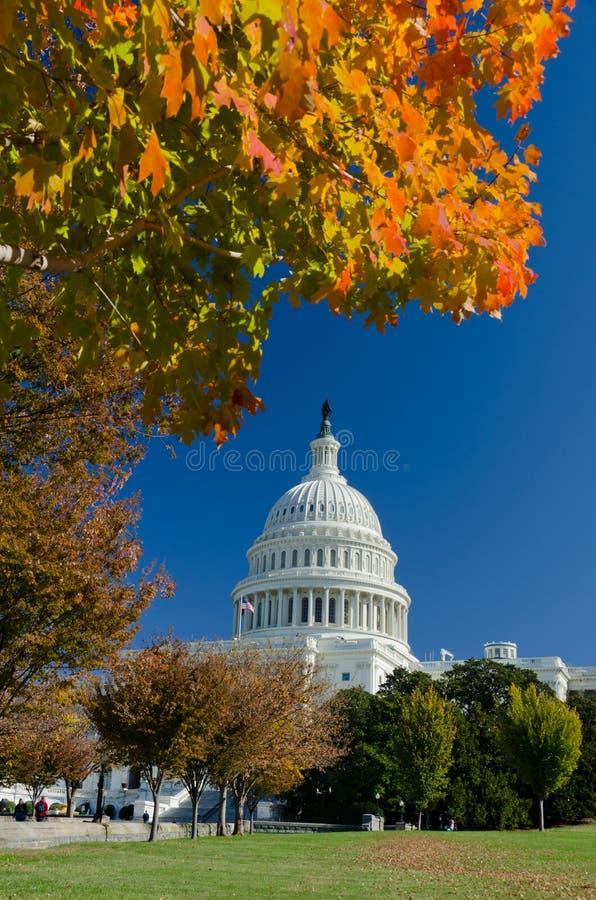 Edifício no outono, Washington DC do Capitólio dos E.U., EUA imagem de stock royalty free