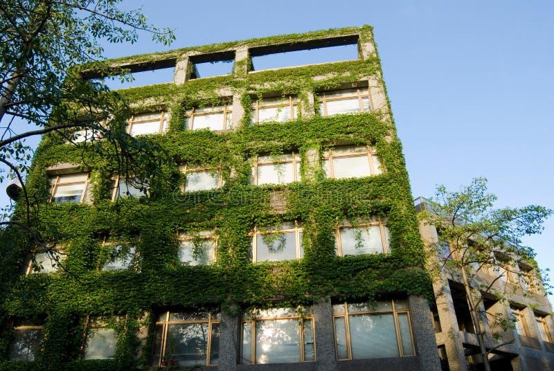 Edifício verde fotos de stock