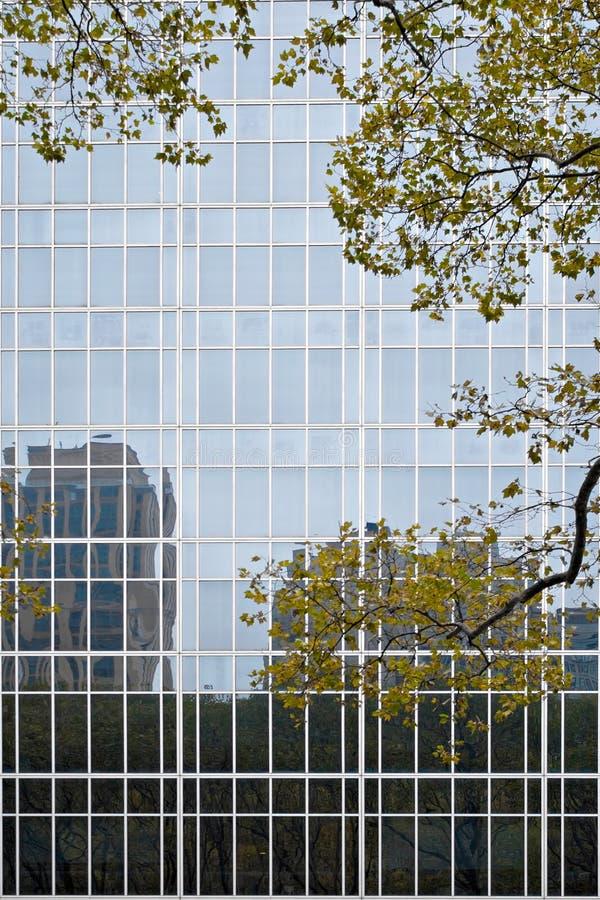 Edifícios do vidro imagem de stock royalty free