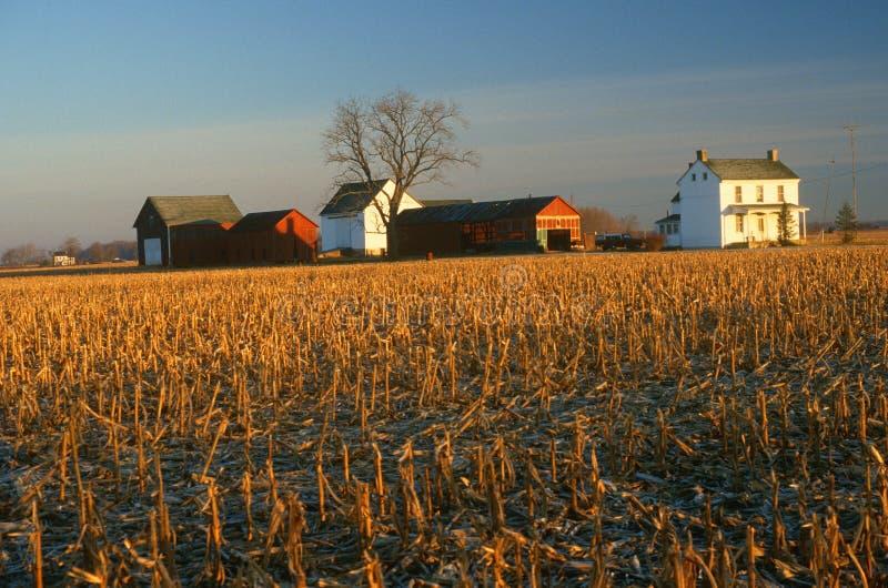 Edifícios e campo de exploração agrícola no inverno imagem de stock