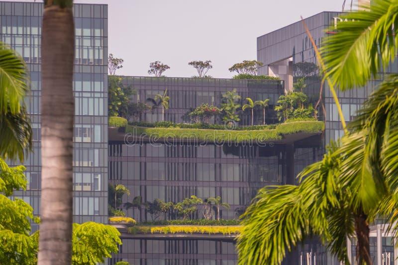 Edifici per uffici di vetro moderni con gli alberi verdi immagini stock