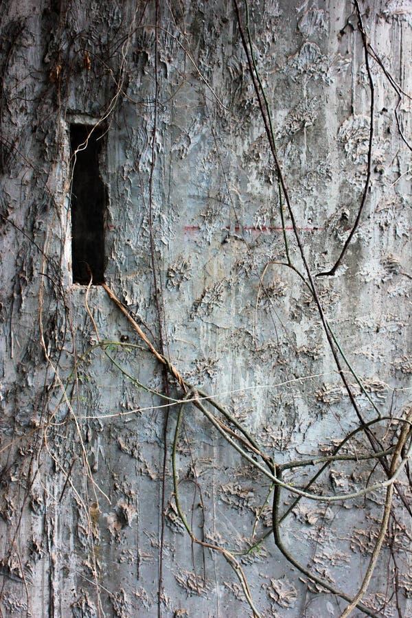 Edificio abandonado película del PA foto de archivo