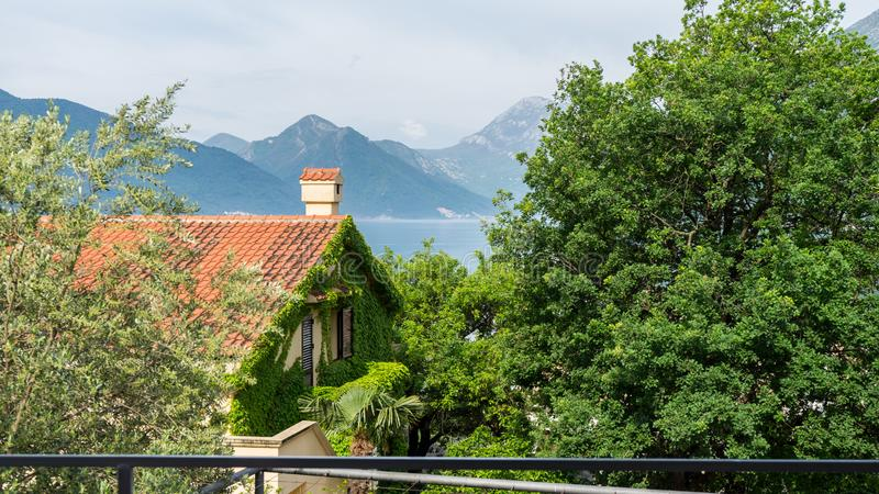 Edificio cubierto por las hojas y las flores de la hiedra Árbol y montañas verdes en el lago Tejas anaranjadas en una casa con la fotografía de archivo libre de regalías