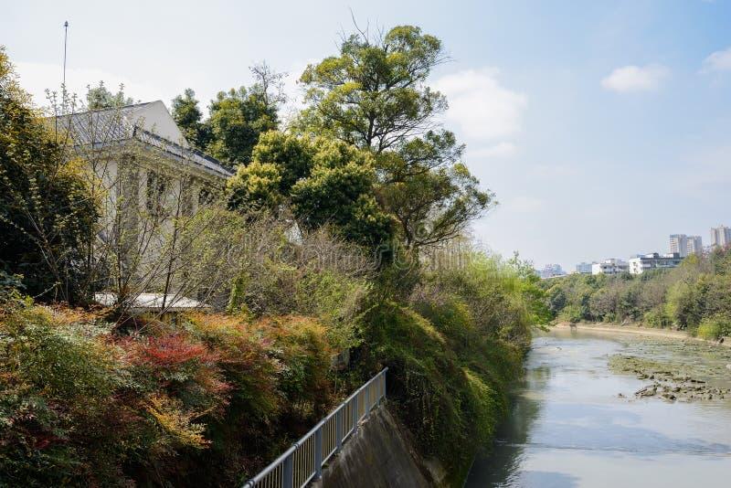 Edificio de la orilla en arbustos y árboles al mediodía soleado de la primavera fotografía de archivo libre de regalías