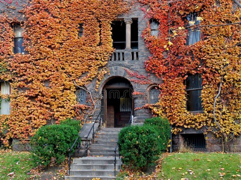 Edificio de la universidad con la hiedra de la caída foto de archivo libre de regalías