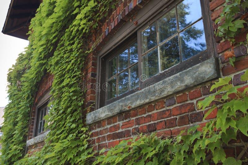 Edificio de ladrillo overgrown imágenes de archivo libres de regalías