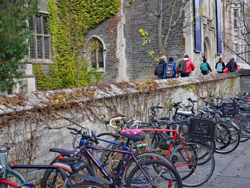 Edificio de piedra de la universidad del estilo gótico con la hiedra en caída, fotografía de archivo