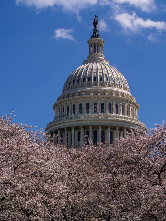 Edificio del capitolio de Estados Unidos - Washington D C , los E fotos de archivo