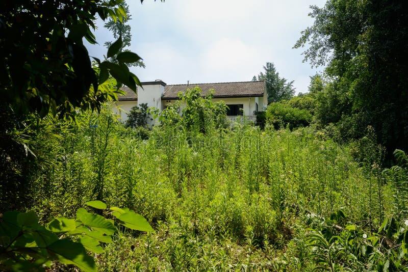 edificio Dos-famoso en malas hierbas y árboles del verano soleado imagen de archivo libre de regalías