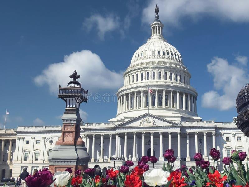 Edificio, flores y fuente del capitolio en la C.C. de Washington fotografía de archivo libre de regalías