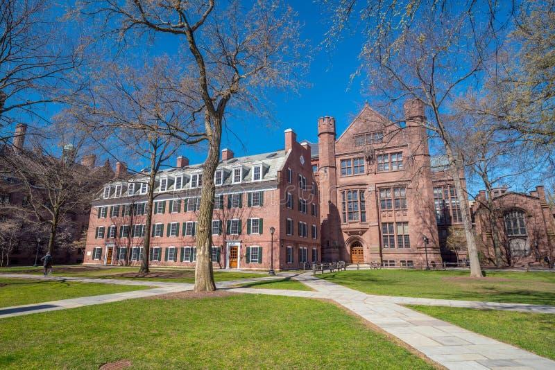 Edificio histórico en New Haven céntrica foto de archivo libre de regalías