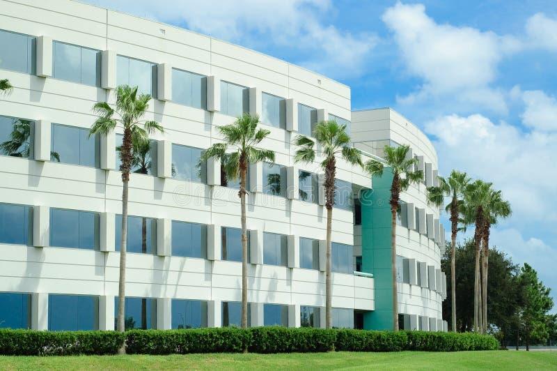 Edificio per uffici con le palme. immagine stock