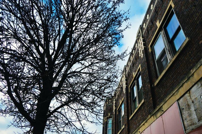 Edificio viejo con el árbol foto de archivo libre de regalías