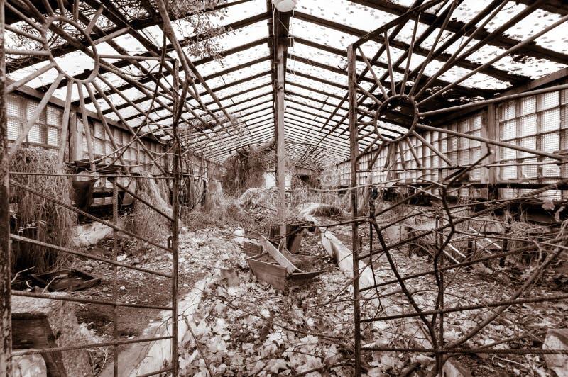 Edificio viejo en zona de exclusión de Chernóbil, Pripyat, Ucrania del invernadero filtro del vintage imágenes de archivo libres de regalías