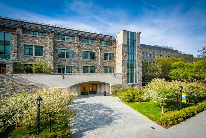 Edificio y calzadas en Loyola University Maryland, en Baltimor fotos de archivo libres de regalías