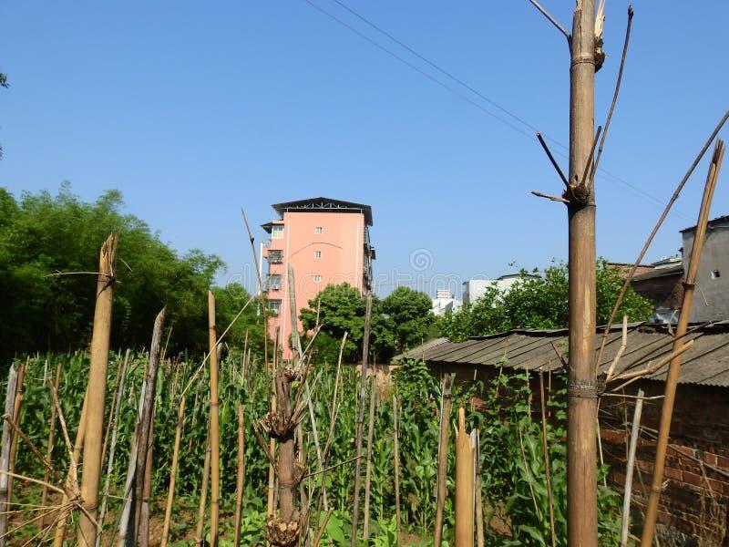 Edificios altos en zonas rurales chinas imagen de archivo