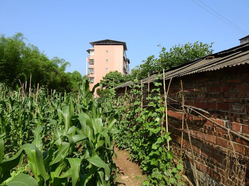 Edificios altos en zonas rurales chinas imagen de archivo libre de regalías