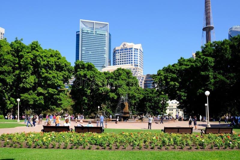 Edificios de Sydney Tower y de la ciudad, visión desde Hyde Park, Australia imagenes de archivo
