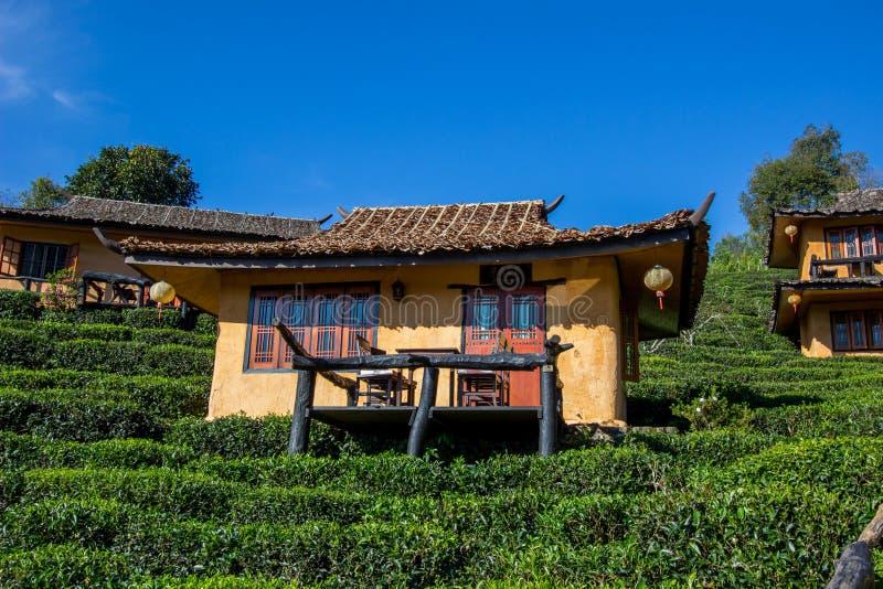 Edificios de tierra y plantaciones de té U-largas en el pueblo tailandés de Rak de la prohibición, cerca de la frontera de Tailan foto de archivo