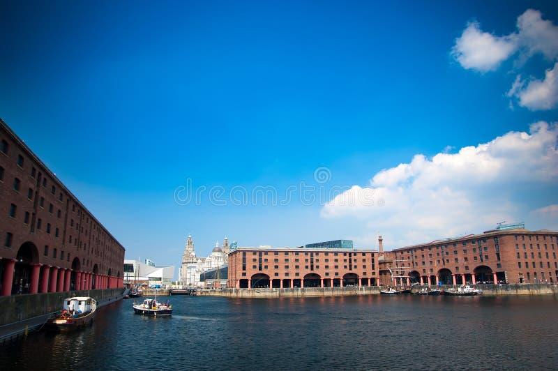 Edificios del muelle y del hígado de Albert en Liverpool fotos de archivo libres de regalías
