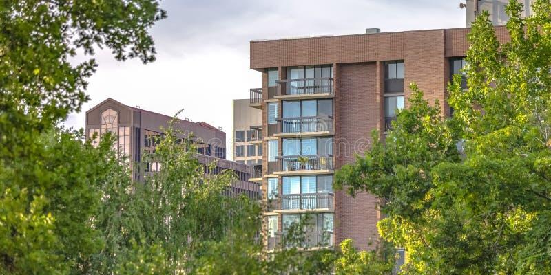 Edificios detrás de árboles iluminados por el sol en Salt Lake City imagen de archivo libre de regalías