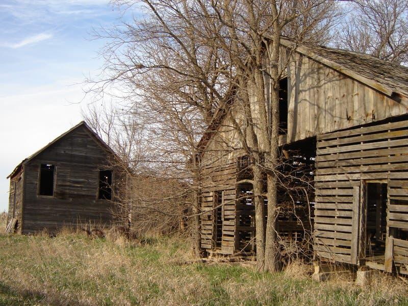 Edificios y árbol abandonados foto de archivo libre de regalías