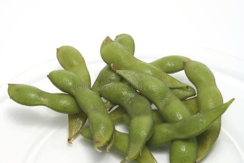 Edinome (haricots de soja) d'une plaque image stock