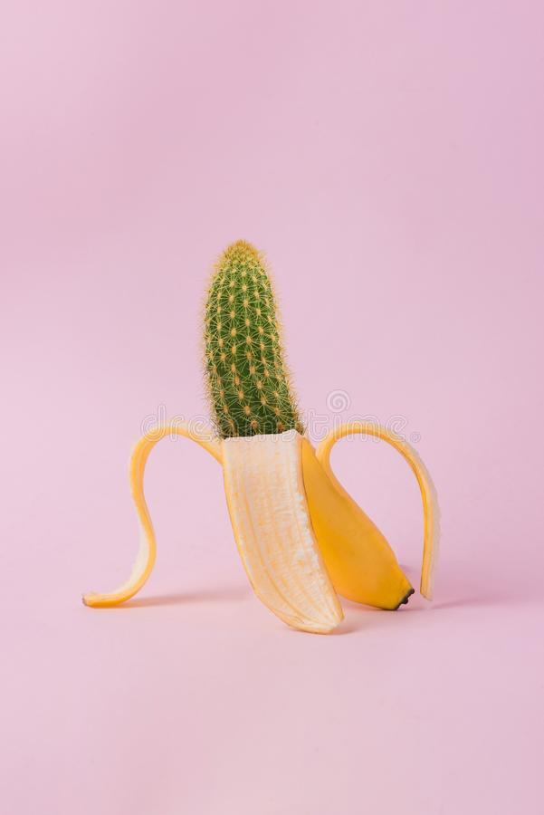 Edited Photo of Banana and Cactus royalty free stock photography