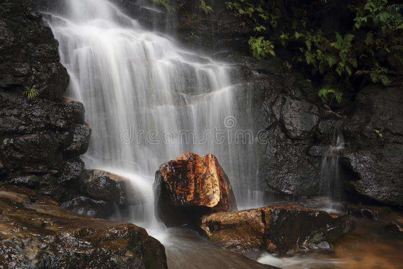 Edith Falls Blue Mountains stock image