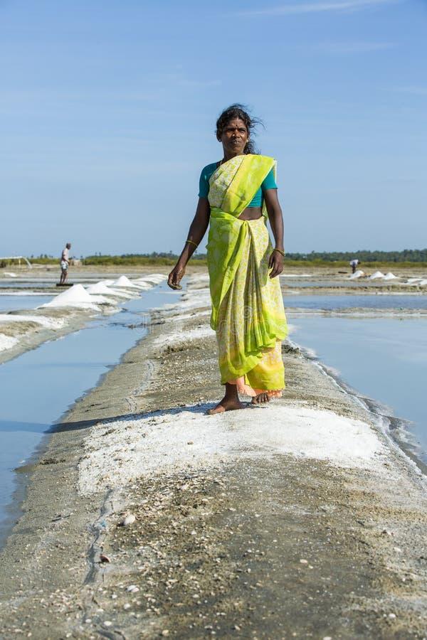 Editorial documental de la imagen Trabajador de campo de la sal la India imagen de archivo
