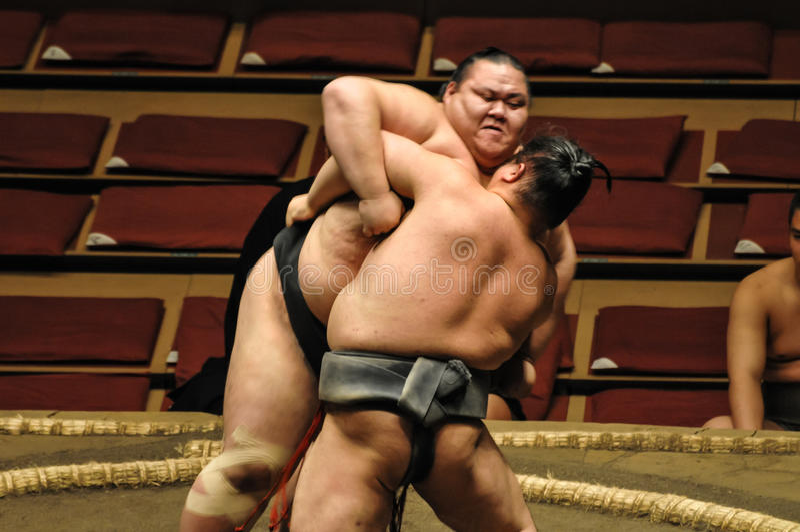 Editorial Wrestlers in Sumo Tournament stock images
