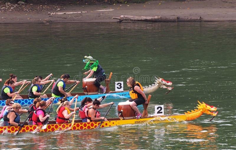 Edmonton Dragon Boat Festival arkivfoto