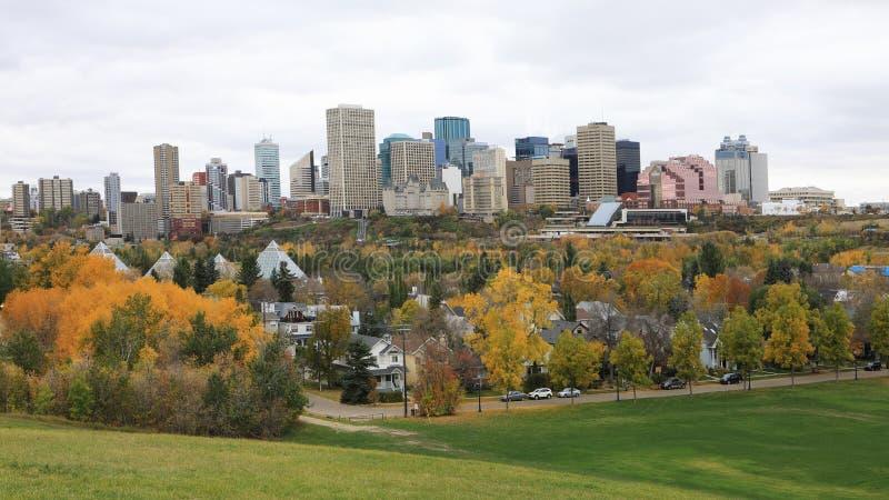 Edmonton Kanada cityscape med den färgrika aspen i förgrund arkivfoton