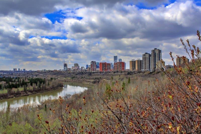 Edmonton River Valley en la primavera fotos de archivo