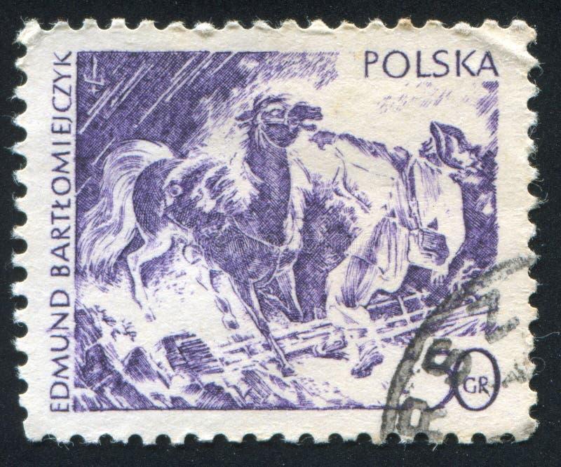 Edmund Bartlomiejczyk royalty-vrije stock afbeelding