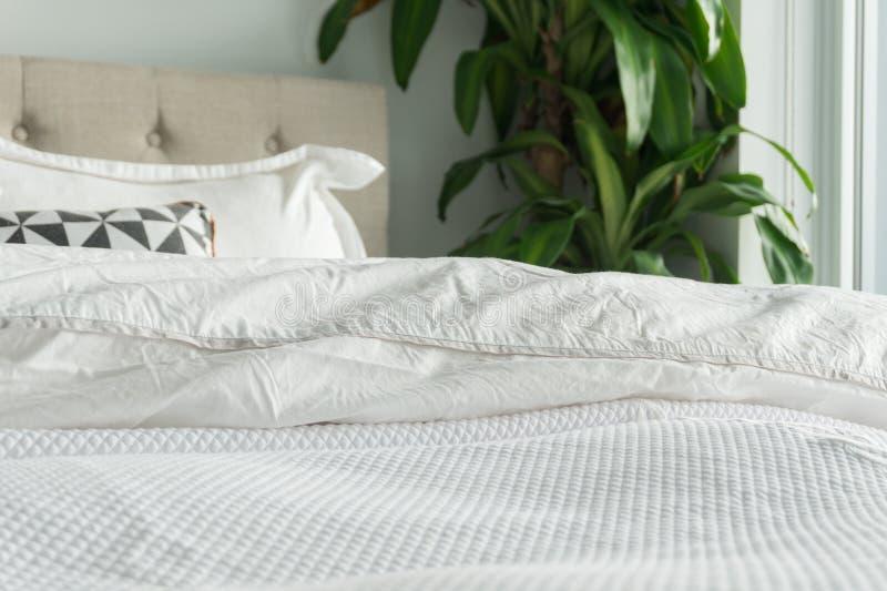 Edredón y manta mullidos, blancos con las almohadas, el cabecero y la planta decorativos de la casa Cama cómoda, acogedora con  fotos de archivo libres de regalías
