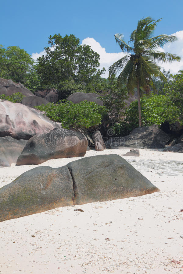 Educações do basalto nos trópicos Baie Lazare, Mahe, Seychelles fotos de stock