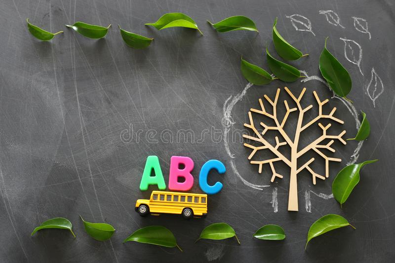 Education and back to school concept. Top view photo of school bus and ABC letters on the roof next to tree with autumn leaves royalty free stock photography